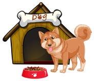 Σκυλί και σπίτι Στοκ εικόνες με δικαίωμα ελεύθερης χρήσης