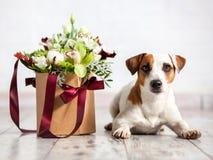 Σκυλί με τα λουλούδια ανθοδεσμών Στοκ φωτογραφία με δικαίωμα ελεύθερης χρήσης