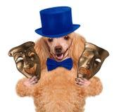 Σκυλί με τις θεατρικές μάσκες Στοκ Εικόνες