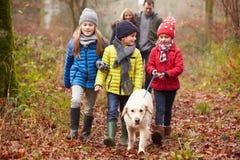 Σκυλί οικογενειακού περπατήματος μέσω της χειμερινής δασώδους περιοχής στοκ εικόνες