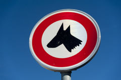 Σκυλί που επιτρέπεται κανένα Στοκ Εικόνα