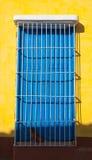 Σκυλί που φρουρεί στα σκαλοπάτια ενός κίτρινου σπιτιού inTrinidad, Κούβα Στοκ Εικόνες