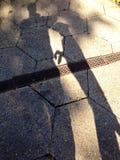 Σκυλί σκιών Στοκ εικόνες με δικαίωμα ελεύθερης χρήσης