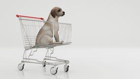 Σκυλί στο κάρρο αγορών που απομονώνεται στο λευκό Στοκ φωτογραφίες με δικαίωμα ελεύθερης χρήσης