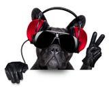 σκυλί του DJ Στοκ φωτογραφία με δικαίωμα ελεύθερης χρήσης