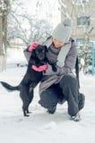 Σκυλί χιονιού γυναικών Στοκ φωτογραφία με δικαίωμα ελεύθερης χρήσης