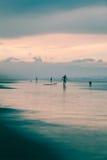 Σκυλιά και surfers στην παραλία Στοκ Φωτογραφία