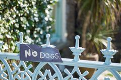 σκυλιά κανένα σημάδι στοκ φωτογραφίες με δικαίωμα ελεύθερης χρήσης
