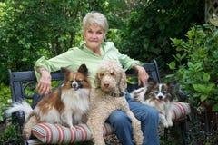 Σκυλιά περιτυλίξεων Στοκ φωτογραφία με δικαίωμα ελεύθερης χρήσης