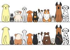 Σκυλιά σε μια σειρά με το διάστημα, το μέτωπο και την πλάτη αντιγράφων ελεύθερη απεικόνιση δικαιώματος