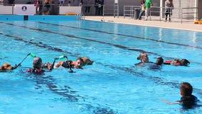 Σκυλιά Lifeguard, ιταλικό σχολείο Cani Salvataggio - S Ι Γ S Επίδειξη διάσωσης στην πισίνα απόθεμα βίντεο