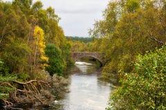 Σκωτσέζικος ποταμός σολομών Χάιλαντς Στοκ Εικόνα
