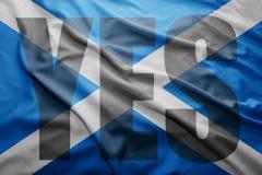 Σκωτσέζικο δημοψήφισμα ανεξαρτησίας Στοκ εικόνα με δικαίωμα ελεύθερης χρήσης
