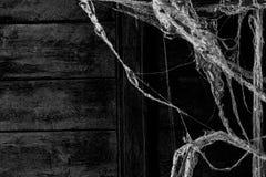 Σκόνη ιστών αράχνης ή Ιστού αραχνών στο υπόβαθρο τοίχων Στοκ Φωτογραφία