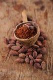 Σκόνη κακάου στο κουτάλι στα ψημένα φασόλια σοκολάτας κακάου backgroun Στοκ Εικόνες