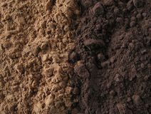 σκόνη κακάου Στοκ Εικόνες