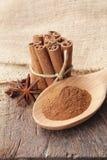 Σκόνη κανέλας στο ξύλινες κουτάλι και τη δέσμη των ραβδιών κανέλας στοκ εικόνες με δικαίωμα ελεύθερης χρήσης