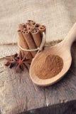 Σκόνη κανέλας στο ξύλινες κουτάλι και τη δέσμη των ραβδιών κανέλας Στοκ φωτογραφία με δικαίωμα ελεύθερης χρήσης