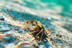 Σκόπελος θάλασσας ομορφιάς και άμμος θάλασσας Στοκ Εικόνα