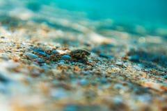 Σκόπελος θάλασσας ομορφιάς και άμμος θάλασσας Στοκ φωτογραφία με δικαίωμα ελεύθερης χρήσης