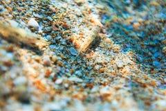 Σκόπελος θάλασσας ομορφιάς και άμμος θάλασσας Στοκ εικόνες με δικαίωμα ελεύθερης χρήσης