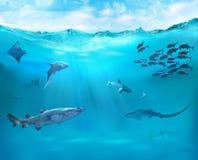 Σκόπελος με τα θαλάσσια ζώα διανυσματική απεικόνιση