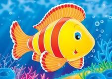 σκόπελος ψαριών κοραλλ&i Στοκ Εικόνες