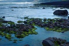 Σκόπελος στην παραλία Στοκ εικόνες με δικαίωμα ελεύθερης χρήσης