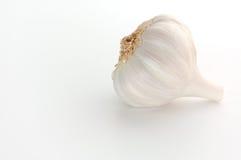 σκόρδο βολβών Στοκ φωτογραφία με δικαίωμα ελεύθερης χρήσης