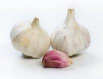 Σκόρδο και γαρίφαλο Στοκ εικόνα με δικαίωμα ελεύθερης χρήσης