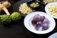 Σκόρδο κρεμμυδιών στο άσπρο πιάτο με το νέα πράσινα plumule και Bergam Στοκ φωτογραφία με δικαίωμα ελεύθερης χρήσης
