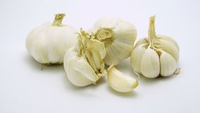 Σκόρδο που τίθεται στο άσπρο υπόβαθρο Στοκ εικόνα με δικαίωμα ελεύθερης χρήσης