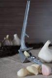 Σκόρδο Βολβοί σκόρδου με τα γαρίφαλα burlap στο υπόβαθρο, υγιής τρόπος ζωής έννοιας Στο υπόβαθρο ένα μικρό μπάλωμα του σκόρδου Στοκ Φωτογραφία