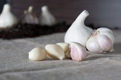 Σκόρδο Βολβοί σκόρδου με τα γαρίφαλα burlap στο υπόβαθρο, υγιής τρόπος ζωής έννοιας Στο υπόβαθρο ένα μικρό μπάλωμα του σκόρδου Στοκ Εικόνες