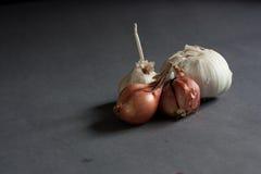 Σκόρδο και κρεμμύδια Στοκ Εικόνες