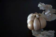 σκόρδο οργανικό στοκ εικόνα με δικαίωμα ελεύθερης χρήσης