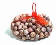 Σκόρδο στην τσάντα Στοκ Εικόνες