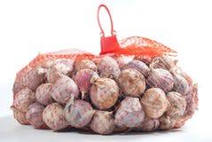 Σκόρδο στην τσάντα Στοκ Εικόνα
