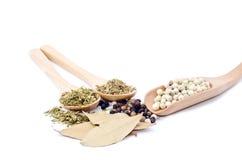 σκόρδο, φύλλο κόλπων, blackpepper, whitepepper, θυμάρι, γαρίφαλο, φύλλο βασιλικού με το ξύλινο κουτάλι Στοκ εικόνα με δικαίωμα ελεύθερης χρήσης