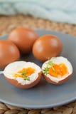 Σκληρά βρασμένα αυγά Στοκ εικόνες με δικαίωμα ελεύθερης χρήσης