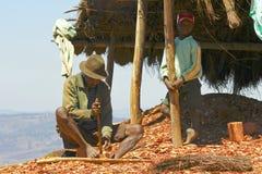 Σκληρά εργαζόμενο φτωχό malagasy άτομο Στοκ εικόνες με δικαίωμα ελεύθερης χρήσης