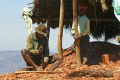Σκληρά εργαζόμενο φτωχό malagasy άτομο Στοκ φωτογραφίες με δικαίωμα ελεύθερης χρήσης
