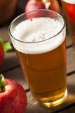 Σκληρή αγγλική μπύρα μηλίτη της Apple στοκ φωτογραφίες με δικαίωμα ελεύθερης χρήσης
