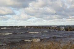 Σκληρός αέρας στον κυματοθραύστη Στοκ εικόνες με δικαίωμα ελεύθερης χρήσης