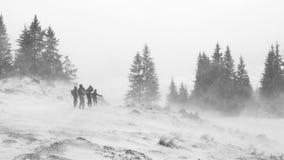 Σκληρός χειμώνας Στοκ εικόνα με δικαίωμα ελεύθερης χρήσης