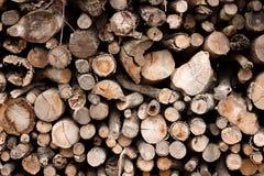 Σκληρό ξύλο 2 Στοκ εικόνες με δικαίωμα ελεύθερης χρήσης