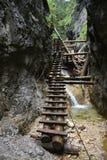 Σλοβάκικος παράδεισος, Slovenskà ½ rà ¡ j, φαράγγι με τις ξύλινες σκάλες στοκ εικόνα