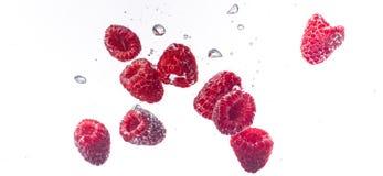 Σμέουρα που καταβρέχουν στο κρύσταλλο - καθαρίστε το νερό στοκ εικόνα
