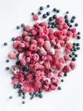 Σμέουρα, φράουλες και μαύρες φράουλες στοκ εικόνα με δικαίωμα ελεύθερης χρήσης