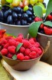 Σμέουρα, φράουλα, σταφύλια και βατόμουρα Στοκ Εικόνες